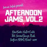 Afternoon Jams Vol.2