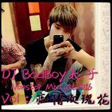 DJ Badboy Nonstop Mixtape 2016 Vol 8:( 痴情玫瑰花 )