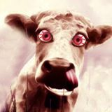 DJ DATFLEX - MAD COW MIX (2014)