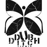 Dub Ditch Picnic Radio Ep. 3 Pt. 2