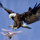 KEEP FLYING - EXCLUSIVE AEGEAN LOUNGE RADIO-