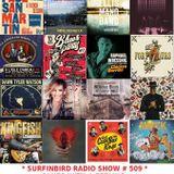 SURFINBIRD RADIO SHOW # 509 BLUES WITH A FEELING