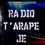 GAGA' con RADIOT'ARAPE JE di ANAPOLOGISMI - 4° episodio su Direzioni Diverse - L' ADOLESCENZA