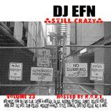DJ EFN - Vol 23 (Still Crazy)