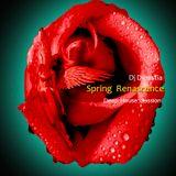 Dj Dinastia - Spring Renascence (Deep Mix)