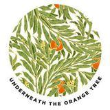 Underneath The Orange Tree - Episode 10 - Tom Cunningham &  James Rogers