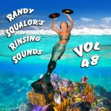 Rinsing Sounds Vol 48