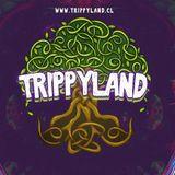 Kiffer Cárdenas Trippyland Contest 2018