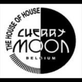 Yves Deruyter & Franky @ Cherry Moon Lokeren 26/08/1995