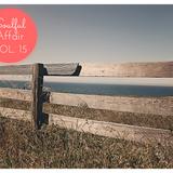 Soulful Affair Vol. 15