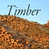 Timber! Show #163 May 21, 2019