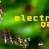 ELECTRIC GARDEN # 2