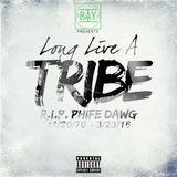 Long Live A Tribe: RIP Phife Dawg (Tribute Mix)