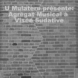 Agrégat Musical à Visée Sudative