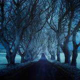 Roads (2015 Part 1)