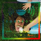 Soulbowl w Radiu LUZ: 165. Muzyka do podlewania kwiatów (2019-07-17)