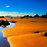 Desert Fishing (ChillTransitExponent)