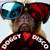 Doggy Loves Disco