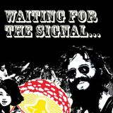 Waiting for the signal - hairy guitar noise from the past, compiled for Waxidermy, May 2007.