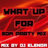 What Up For EDM Party Mix