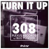 TURN IT UP radio show #308 // PLEXUS RECORDS & BUG POWDER