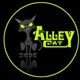 DJ Alley-Kat playing Deep Tech/Detroit Techno on London Pirate Radio on Saturday 16th September 2017