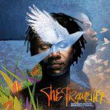 The Traveller (#115)