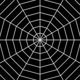 Spiders on Drugs