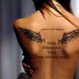 Deep Vibrations Vol.4(Deep January 2016)