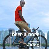 Chill Lounge Deep House Music DJ Mix by JaBig DEEP & DOPE 251