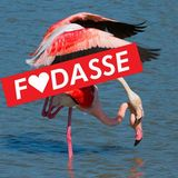 F♥DASSE - Love Is In The Air