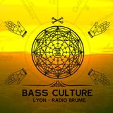 Bass Culture Lyon S09ep17b - LeTo (True Lyon Crew)
