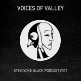 Voices Of Valley - Steyoyoke Black Podcast #047