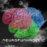 NEUROFUNKADELIC