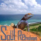 Soul Refreshment