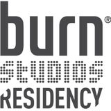 Burn Residency 2014-Mihály Diósi