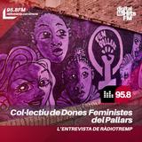 Ràdio Tremp - L'Entrevista a Dones Feministes del Pallars (10/04/2019)