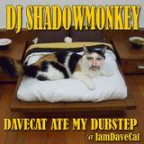 DJ SHADOWMONKEY - DAVECAT ATE MY DUBSTEP