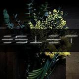 Estet - Feel my taste 2% (#TECHNOMOTION)