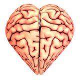 Un juguete llamado mente: cómo funciona el cerebro cuando nos enamoramos - Lucas Raspall