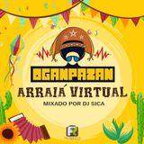Arraiá Virtual Oganpazan [seleção: Danilo Cruz]