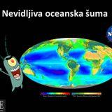 Znanost na Eteru - Nevidljiva oceanska šuma - intervju Sunčica Bosak - 9.3.2017.
