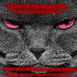 Terror of the Night Cat