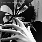 A glance into the broken mirror Vol.XV