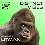 Distinct Vibes #5 Part Two: Litman