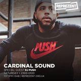 DJ PUSH GUEST MIX - REPRESENT RADIO - CARDINAL SOUND SHOW