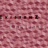 Experience (June 2009)