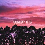 Sunday Podcast / 016