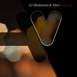 DJ Badskoba & Wain - in the MiX ¯\_(ツ)_/¯