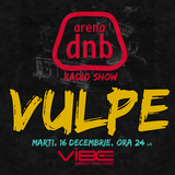 Arena dnb radio show - vibe fm - mixed by VULPE - December 16th 2014